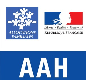 aah le montant de l allocation adulte handicap 233 revaloris 233 224 807 65 euros au 1er septembre