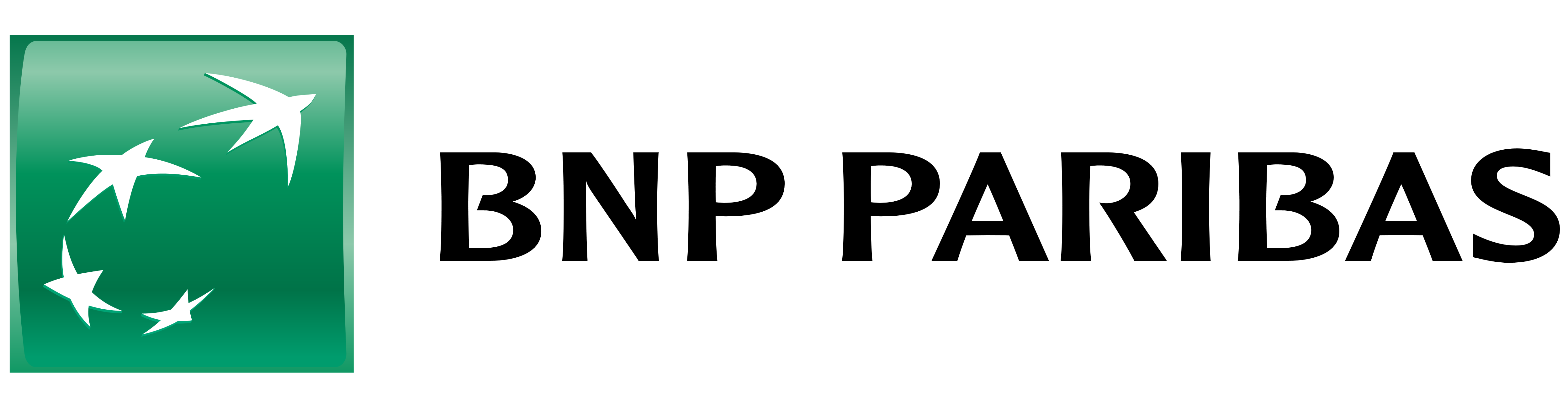 bnp_2020