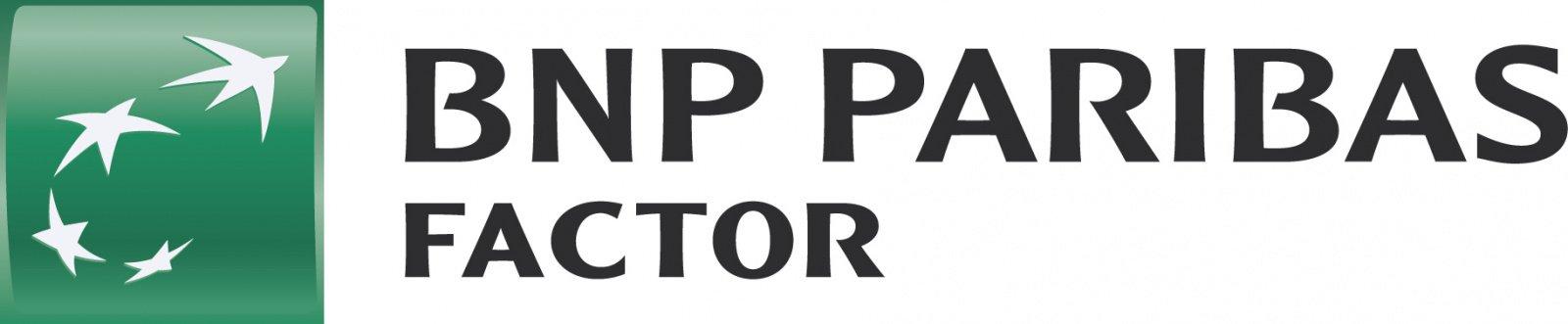 bnp_factor_2020