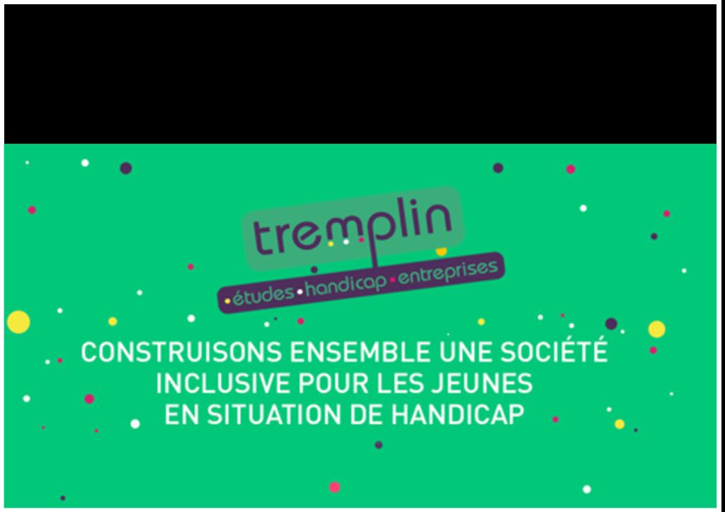 TREMPLIN Handicap, propose à deux jeunes volontaires du Service Civique de s'engager à ses côtés pour contribuer à une société plus inclusive.